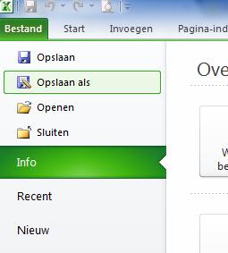 Excel_2010_document_opslaan