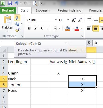 Inhoud_Knippen_Excel_2010