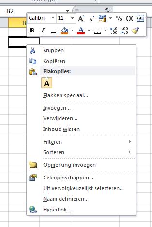 Opmaakopdrachten_Excel_2010