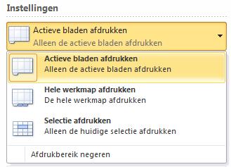 actieve_werkbladen_afdrukken_excel